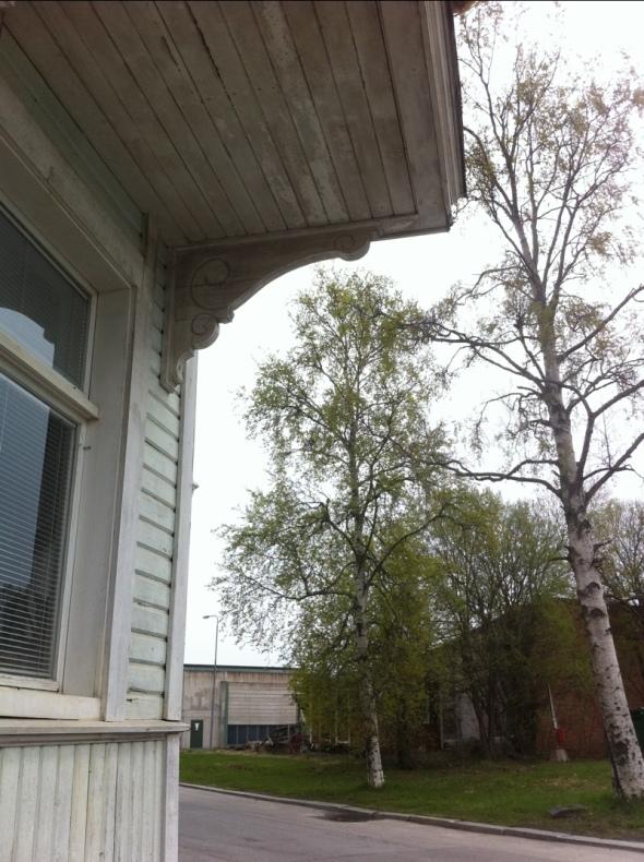 20110515-020800.jpg